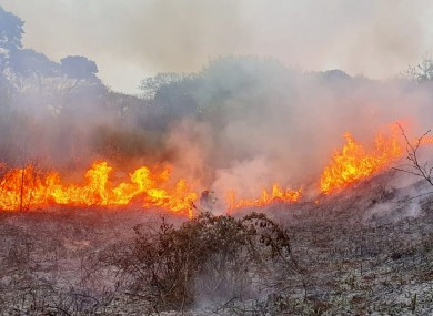 Firefighters were dispatched to this gorse fire in Howth last month.
