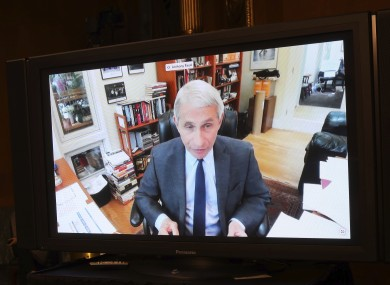 Dr Anthony Fauci, Director of the National Institute of Allergy and Infectious Diseases, speaks remotely during a virtual US Senate committee hearing today.