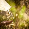 'But what about all the rain?': 3 myths about water conservation in Ireland, put to the test