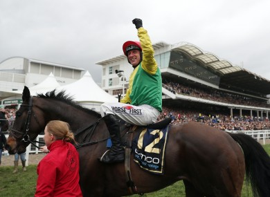 Sizing John, winner of the 2017 Cheltenham Gold Cup, has been retired through injury.