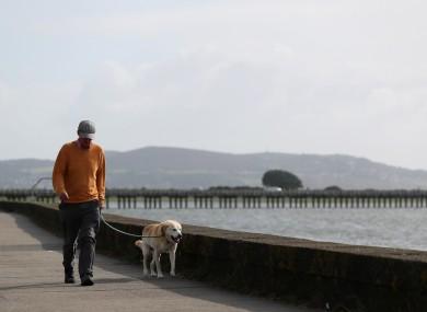 A man walks his dog along the Clontarf promenade.