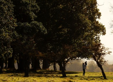 A man lifts a child for a better view on an autumn day in Dublin's Phoenix park.