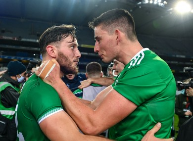 Tom Morrissey and Gearoid Hegarty were central figures in Limerick's All-Ireland success.