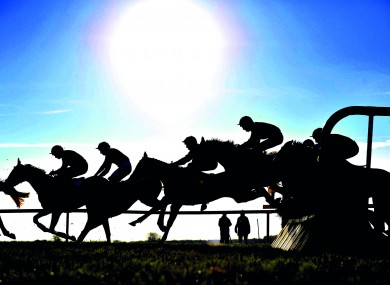 Silhouettes in flight at Fairyhouse.