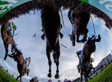 GPS technology could be a huge benefit to horse racing.