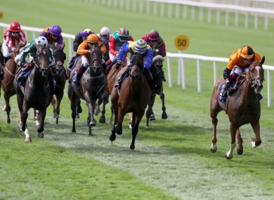 Horse Racing Ireland could face questions from the PAC over the missing money.