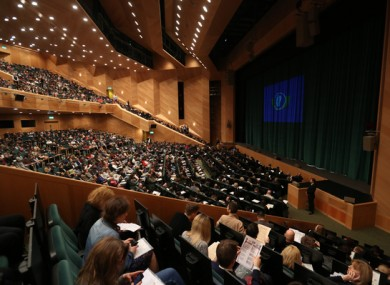 File image of a citizenship ceremony in Dublin's Convention Centre in 2017.