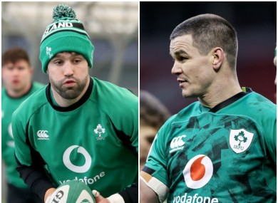 Conor Murray and Johnny Sexton missed last weekend's defeat to France.