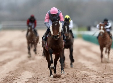 Blowing Dixie wins the Betway Casino Handicap at Southwell.