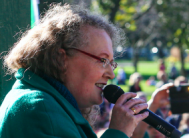 Professor Cahill speaking at the Herbert Park event last week.