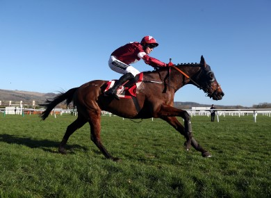 Tiger Roll and jockey Keith Donoghue on the way to winning the Glenfarclas Chase during day two of the Cheltenham Festival last month.