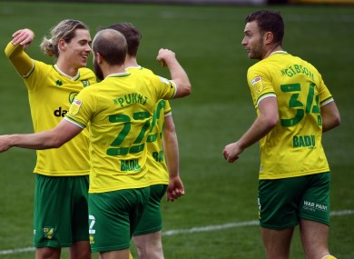 Norwich players are heading back to the Premier League (file photo).