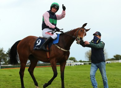 Danny Mullins on Stormy Ireland celebrates.