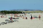 Sun bathers on Dollymount beach Dublin on a glorious sunny day this week.  Photo: Sasko Lazarov/ RollingNews.ie