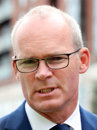 Minister for Foreign Affairs Simon Coveney (file photo)
