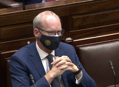 Coveney during this evening's debate.